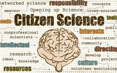 EWI-oproep 'Citizen Science'
